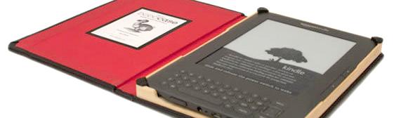 Kindle DODOcase